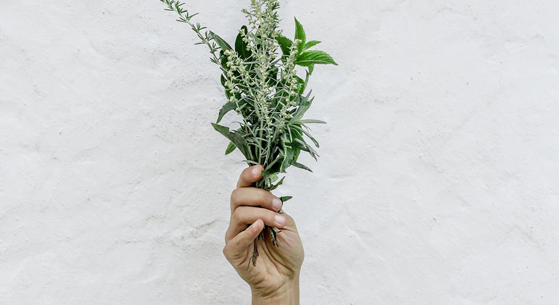 herbs from your garden
